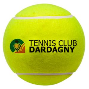 tc Dardagny balle jaune de tennis